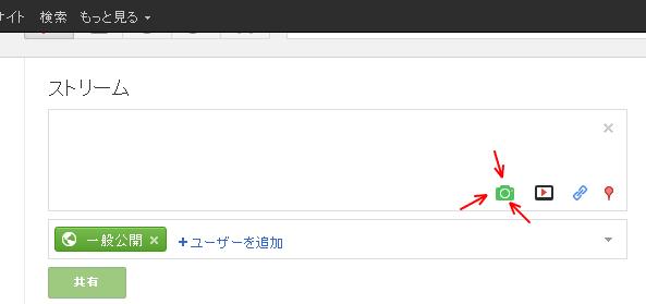 Google+ lolcat