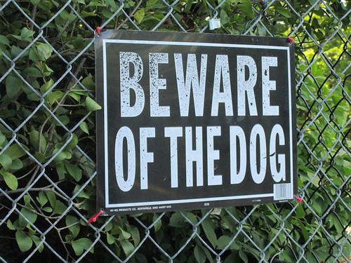 アメリカの訴訟事例4 飼い主を訴えた犬殺し