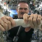 【動画】宇宙で濡れたタオルを絞るとこうなる