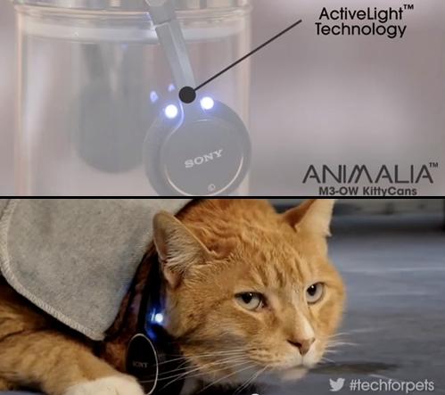 猫ヘッドフォン