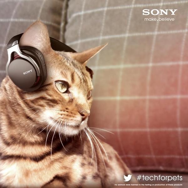 猫専用ヘッドフォン
