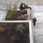 【防犯カメラ】子供を使って盗みを働く鬼畜親の映像 – アメリカ