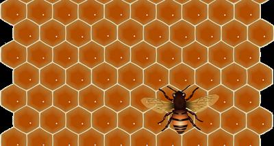 蜂蜜の性質1