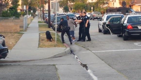警察官が犬を射殺
