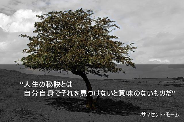 人生の名言 サマセット・モーム