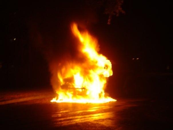 燃える車 ウサギ
