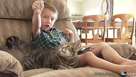 猫 少年救出