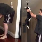 YouTubeで話題のバンザイ猫のフォトショ加工ギャラリー