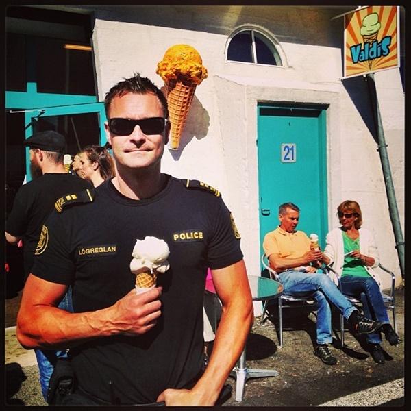 アイスランド警察 2
