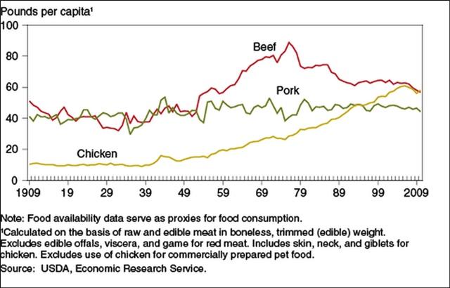 アメリカ 年間鶏肉消費量