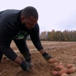 米のプロアメフト選手、NFLの誘いを断り農家に転身