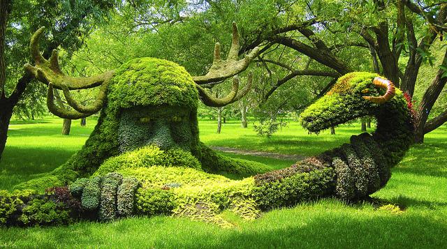 モントリオール植物園2