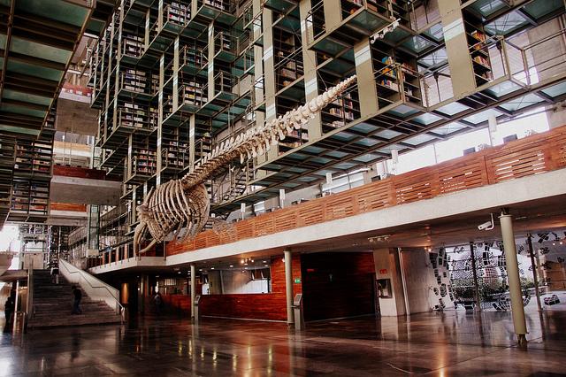 ホセ・バスコンセロス図書館