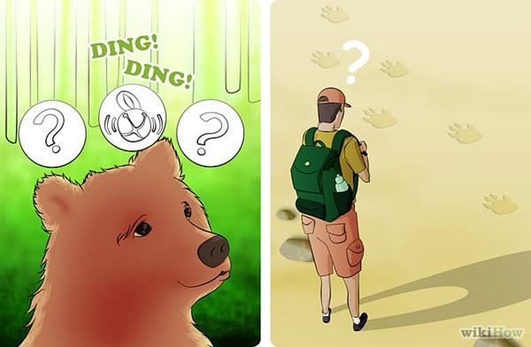 熊を逃れる方法3
