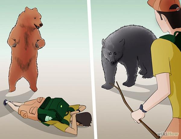 熊を逃れる方法2