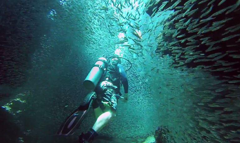 魚のトンネル1