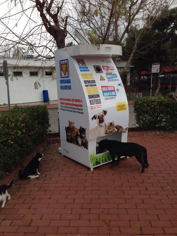 リサイクル 野良犬1