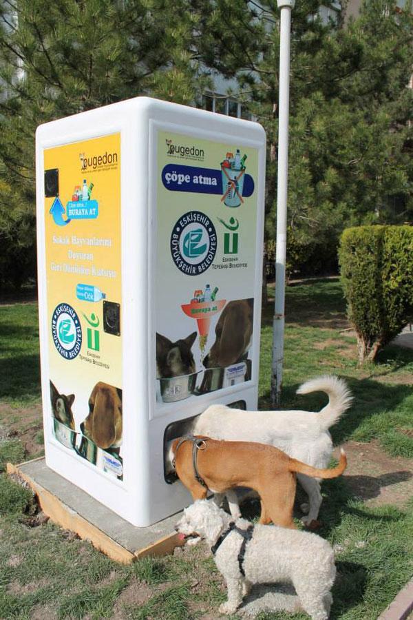 リサイクル 野良犬4