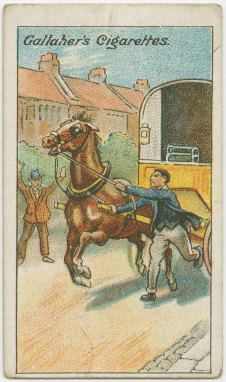 100年前のライフハック 馬