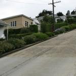 ボールドウィン・ストリート: ニュージーランドの「世界一傾斜が急な街路」