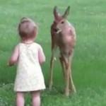 【動画】1歳少女と子鹿の最高にキュートなふれあいの瞬間