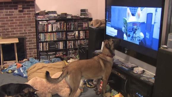 犬 ディズニー映画