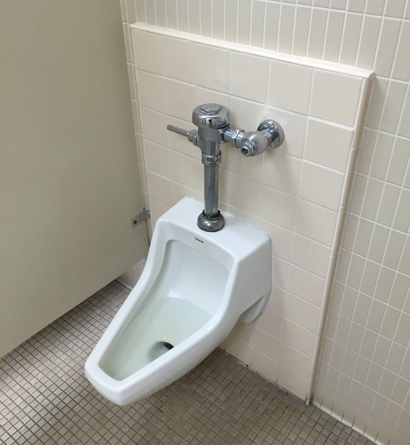 最悪のトイレ6