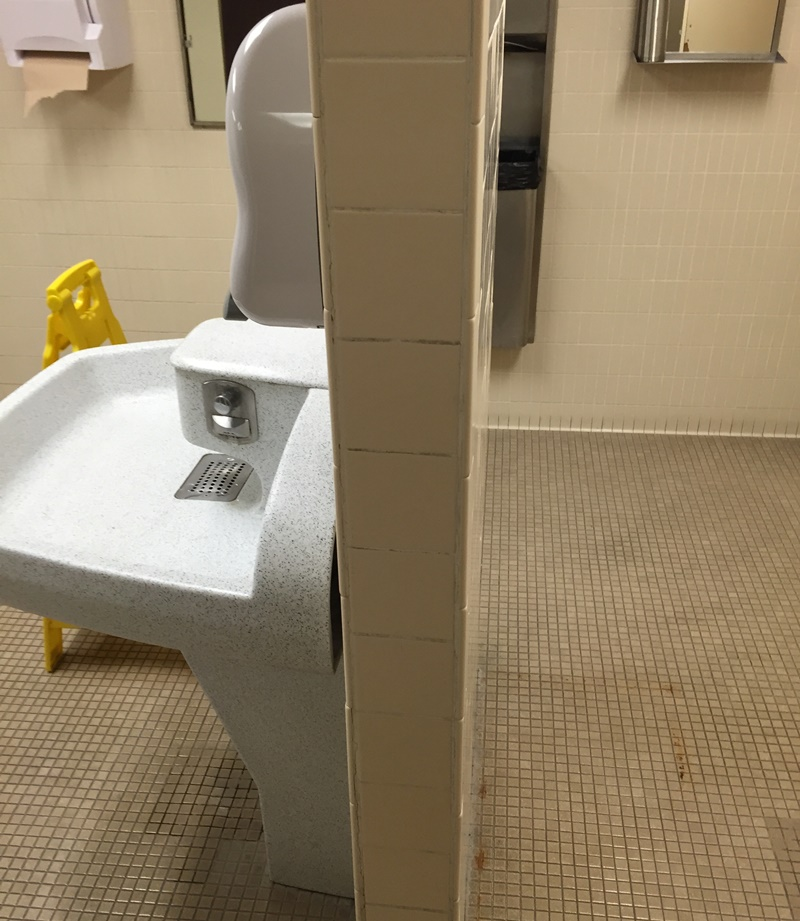 最悪のトイレ7
