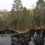 【ビフォー/アフター】ビーバー・ダムの決壊で大きな池が消滅