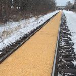 【画像】線路が「コーンロード」になってしまったミネソタの鉄道